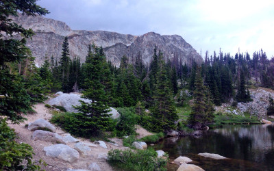 Love Notes from the Trail of Rewilding…